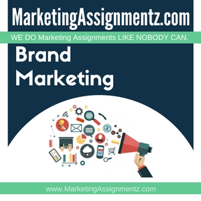 Brand Marketing Assignment Help