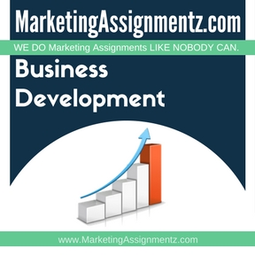 Business Development Assignment Help