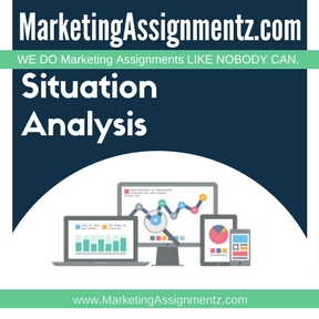 Market Situation Analysis Assignment Help