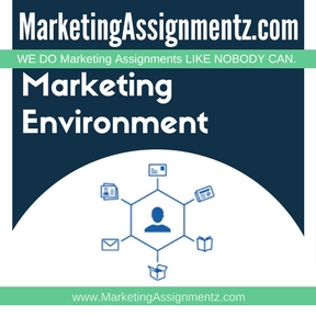 Marketing Environment Assignment Help