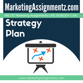 Marketing Strategy and Plan Assignment Help