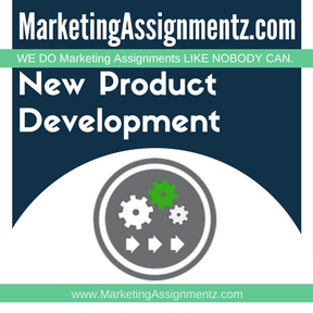 New Product Development Project Help