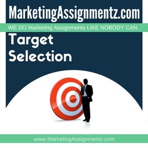 Target Market Selection Homework Help