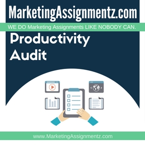The Marketing Productivity Audit Assignment Help