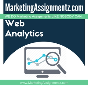 Web Marketing Analytics Assignment Help
